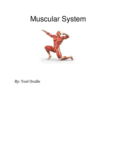 Muscular System Childrens book