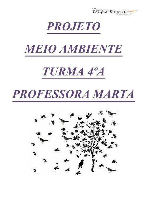 Projeto Meio Ambiente 4ºA