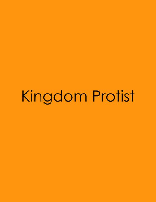 KINGODM PROJECT