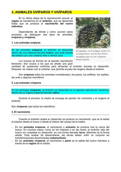3._Animales_ovíparos_y_vivíparos