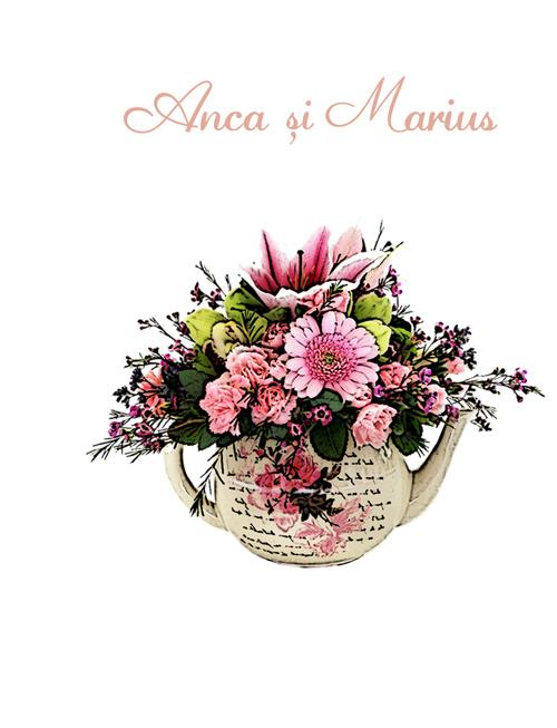 Anca si Marius