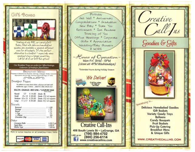 ccins brochure