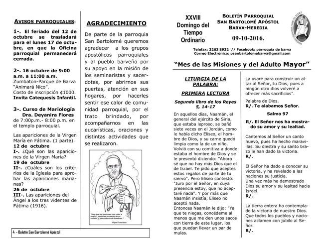 Boletín XXVIII Domingo del Tiempo Ordinario