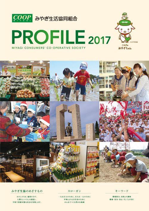profile_japanese_2017