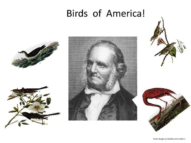 Birds of America- Mr Yetzer's Third Grade Class