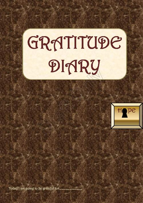 Gratitude Diary 2