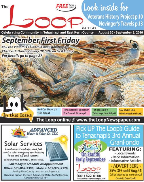 The Loop Newspaper Vol 31 No 03 - August 20 to September 03,