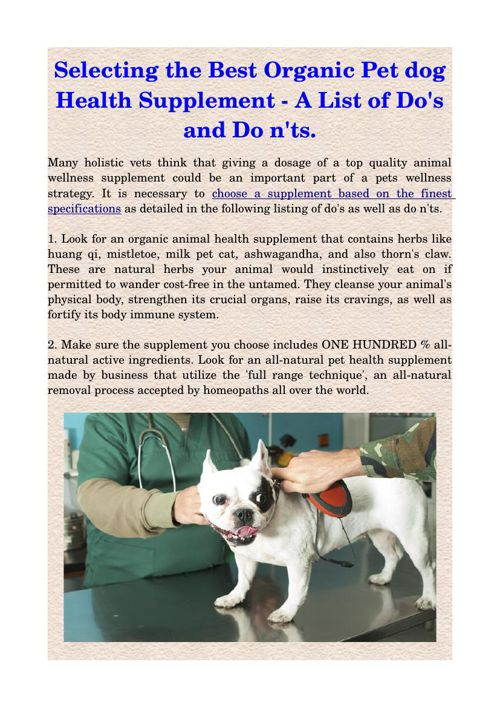 Selecting the Best Organic Pet dog Health Supplement - A List of