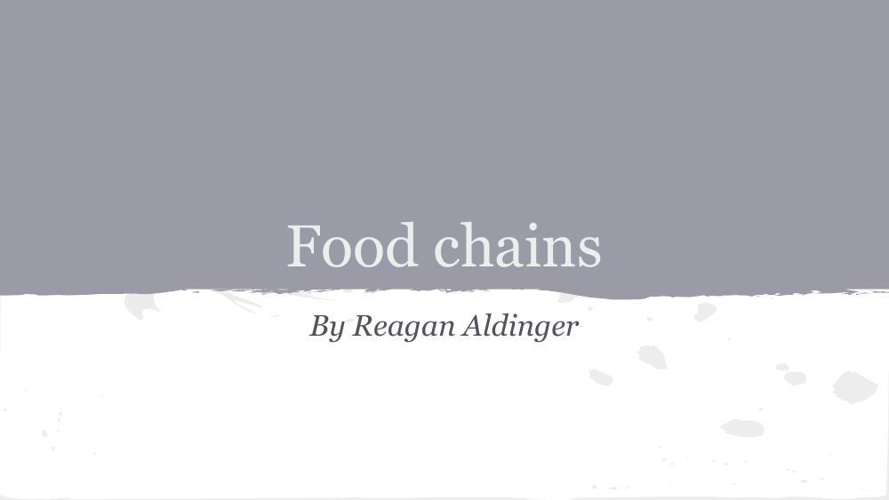 Reagan's food chain flipbook template