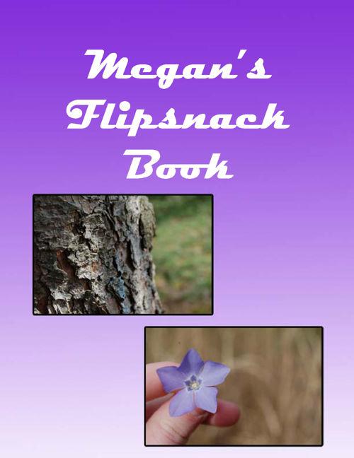 Megan K Flipsnack