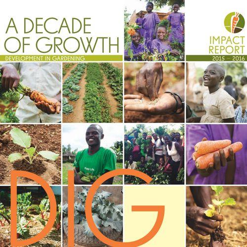 DIG Impact Report 2015-16