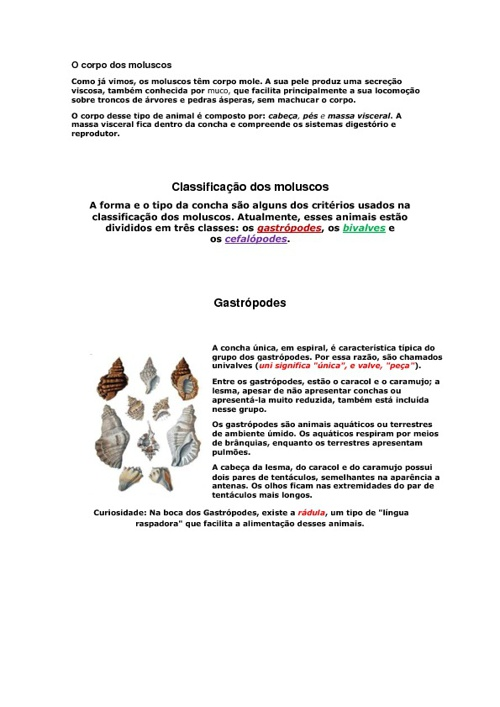 Trabalho de Ciências - Cartaz