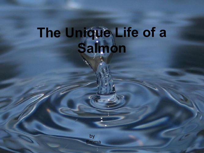 The Unique life of a salmon