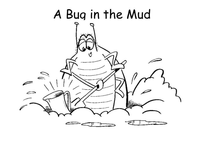 A Bug in the Mud