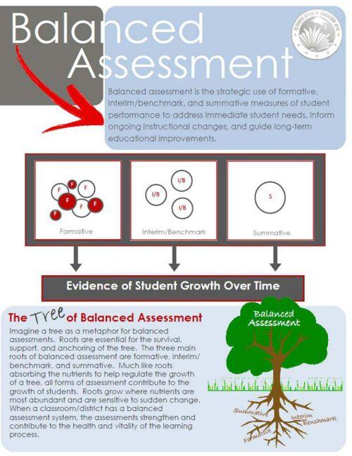 Balanced Assessment InsertLW2