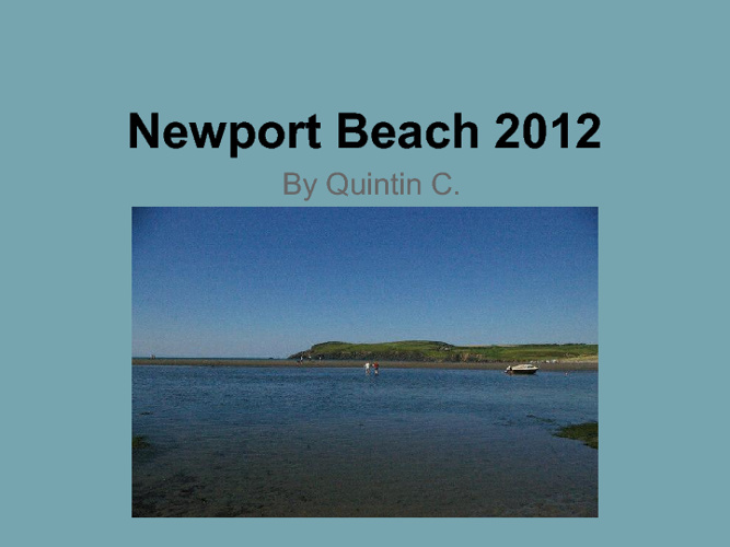 Newport Beach By Quintin C.