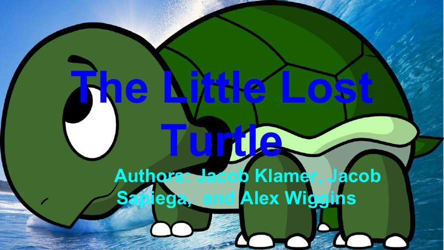The Little Lost Turtle
