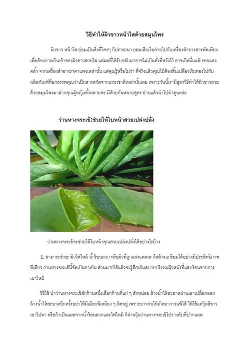 5410610349_บทความทางวิชาการ