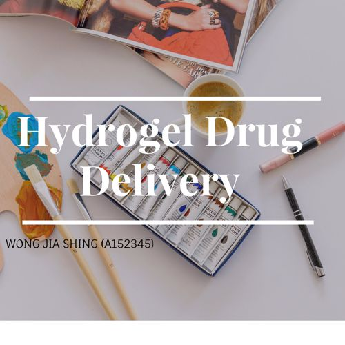 Hydrogel Drug Delivery A152345_WongJiaShing