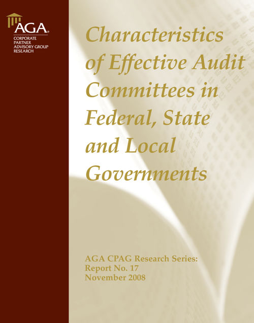 Effective Audit Committees Nov 2008