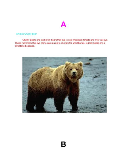 A-Z California flipbook