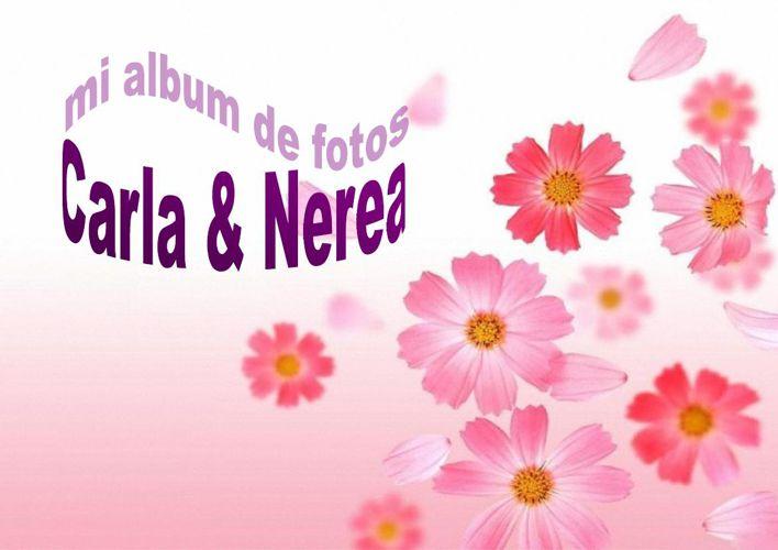 Copy of prueba catalogo nerea carla