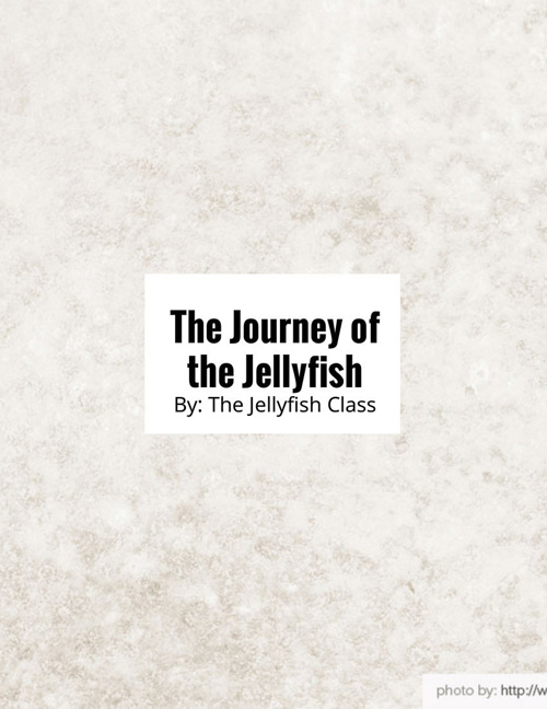 Jellyfish Journey