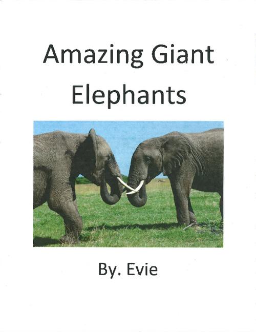 Elephants by. Evie