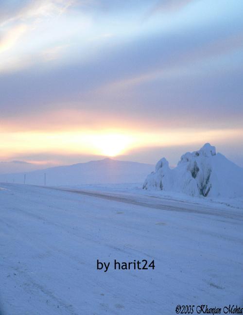 Arctic Tundra by Harit