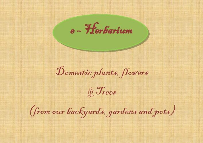 e-Herbarium