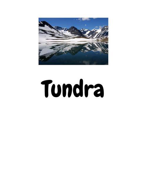 Tundra.docx (3)