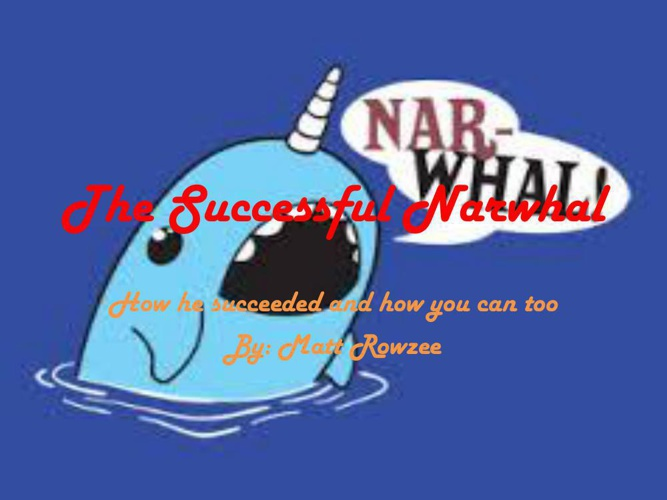 The Successful Narwhal