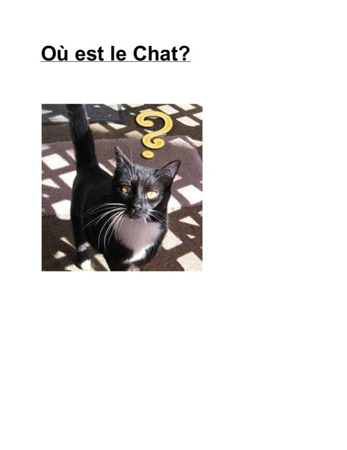 FrenchBook (1)
