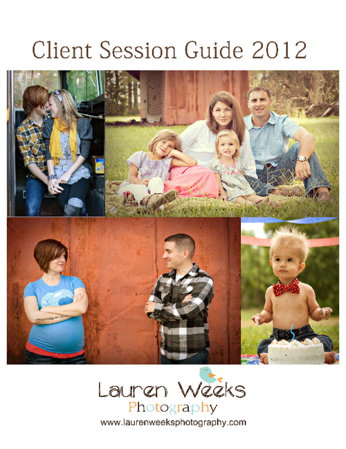 Client Guide 2012