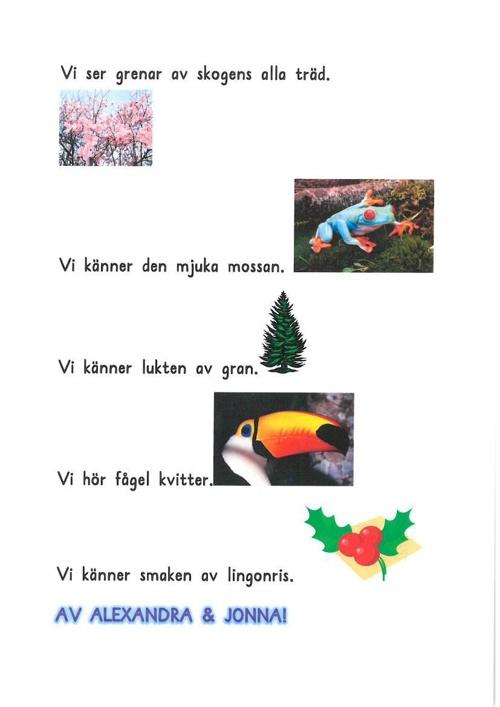 Diktbok klass 2