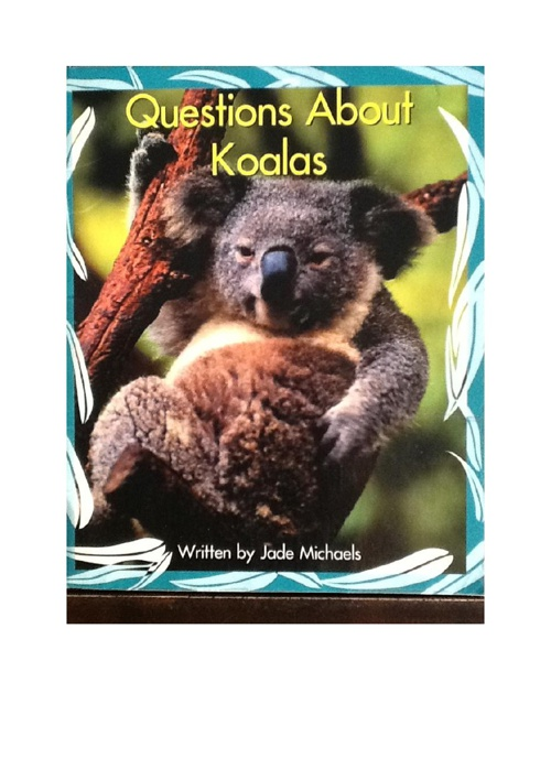 Questions about Koalas