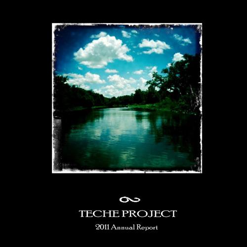 TECHE Project Annual Report