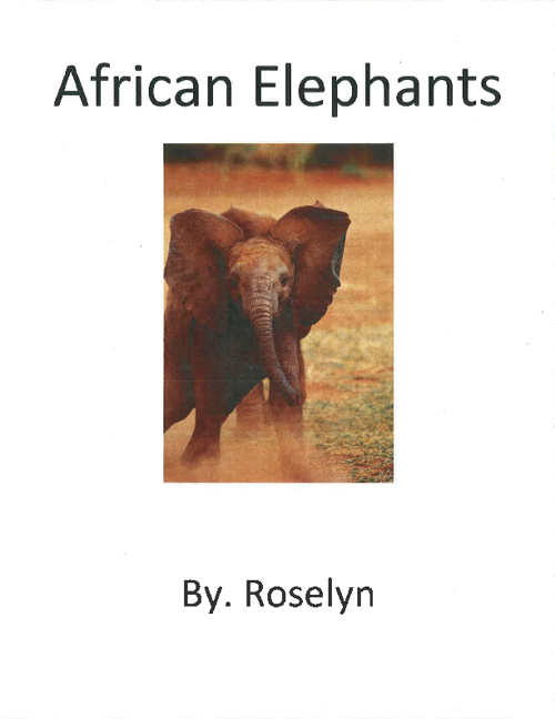 Elephants by. Roselyn