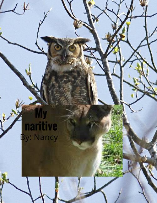 Nancynaritive
