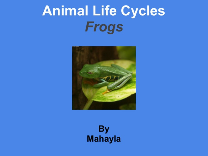 mahayla frog