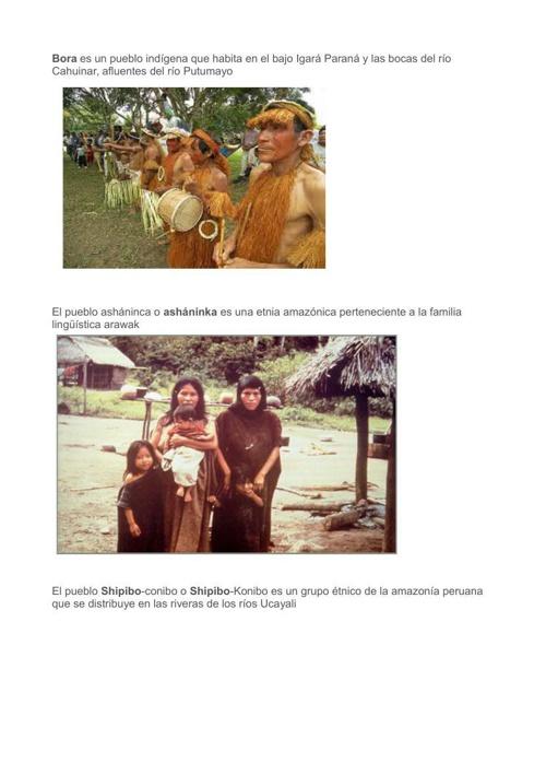 tribus_alesandra_8vo