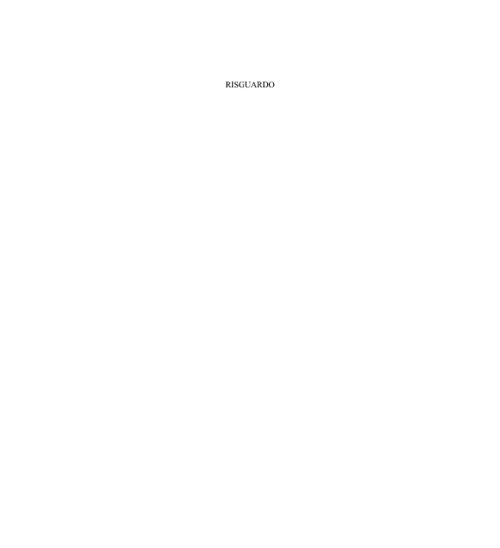 1° Rapporto sullo stato dell'ambiente Palermo