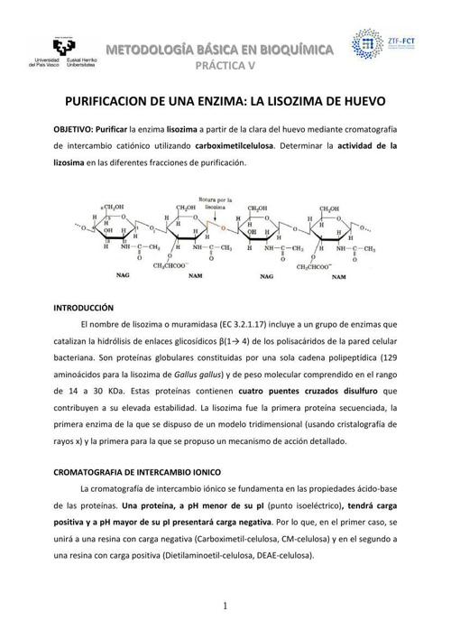 Práctica 5. Purificación de una enzima. La lisozima de huevo