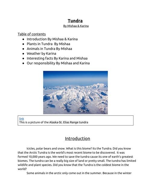 Tundra - sample unfinished work