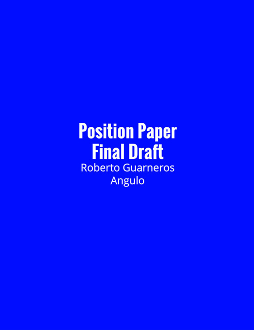 Position Paper Final Draft