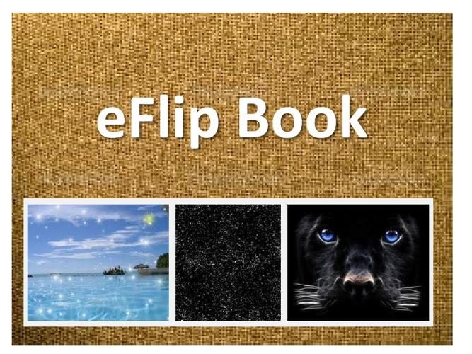 my 1st eflip book