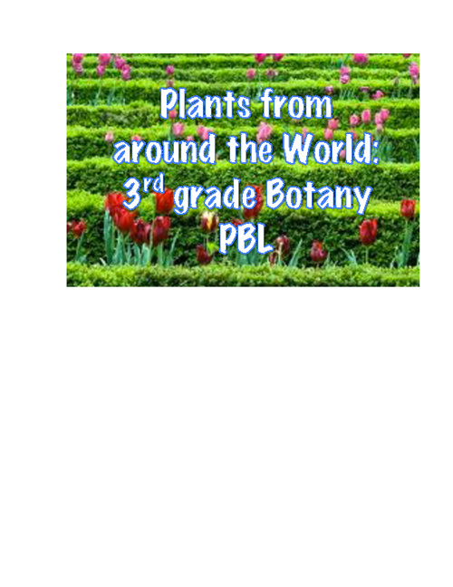 Plants from around the World
