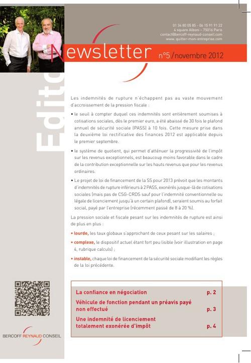 BRC Newsletter 5