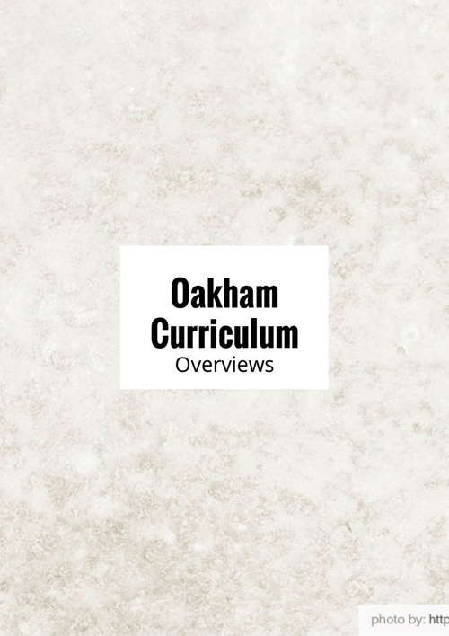 Copy of Curriculum Overviews