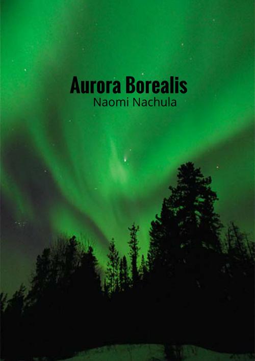 Aurora Borealis Good Copy